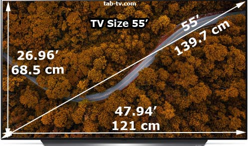 55-inch TV size as shown
